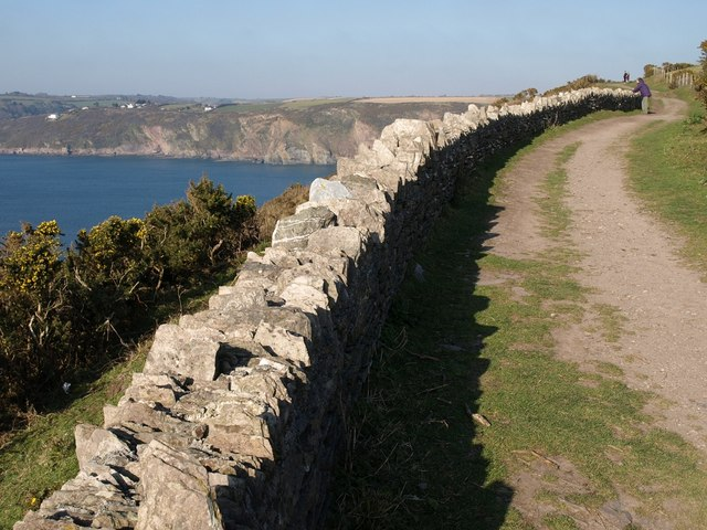 Coast path above Greylake Cove - geograph.org.uk - 703363