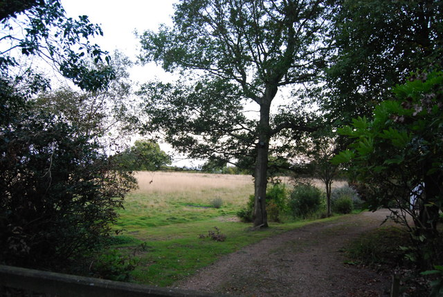Crockham Hill Common - geograph.org.uk - 1501795
