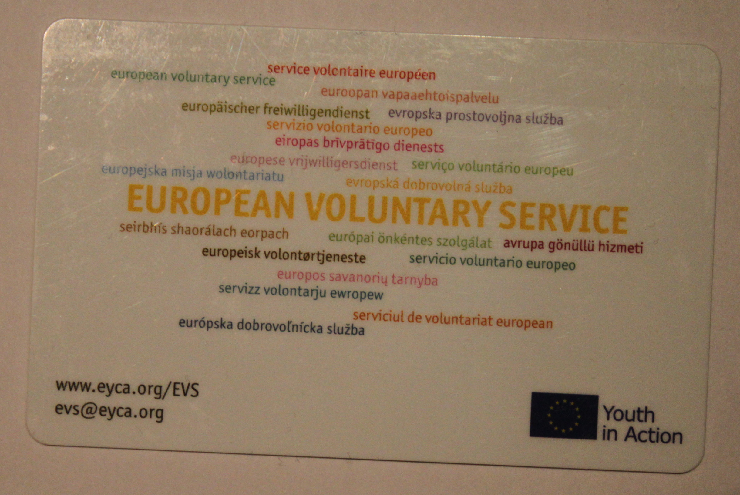 European Voluntary Service - Wikipedia