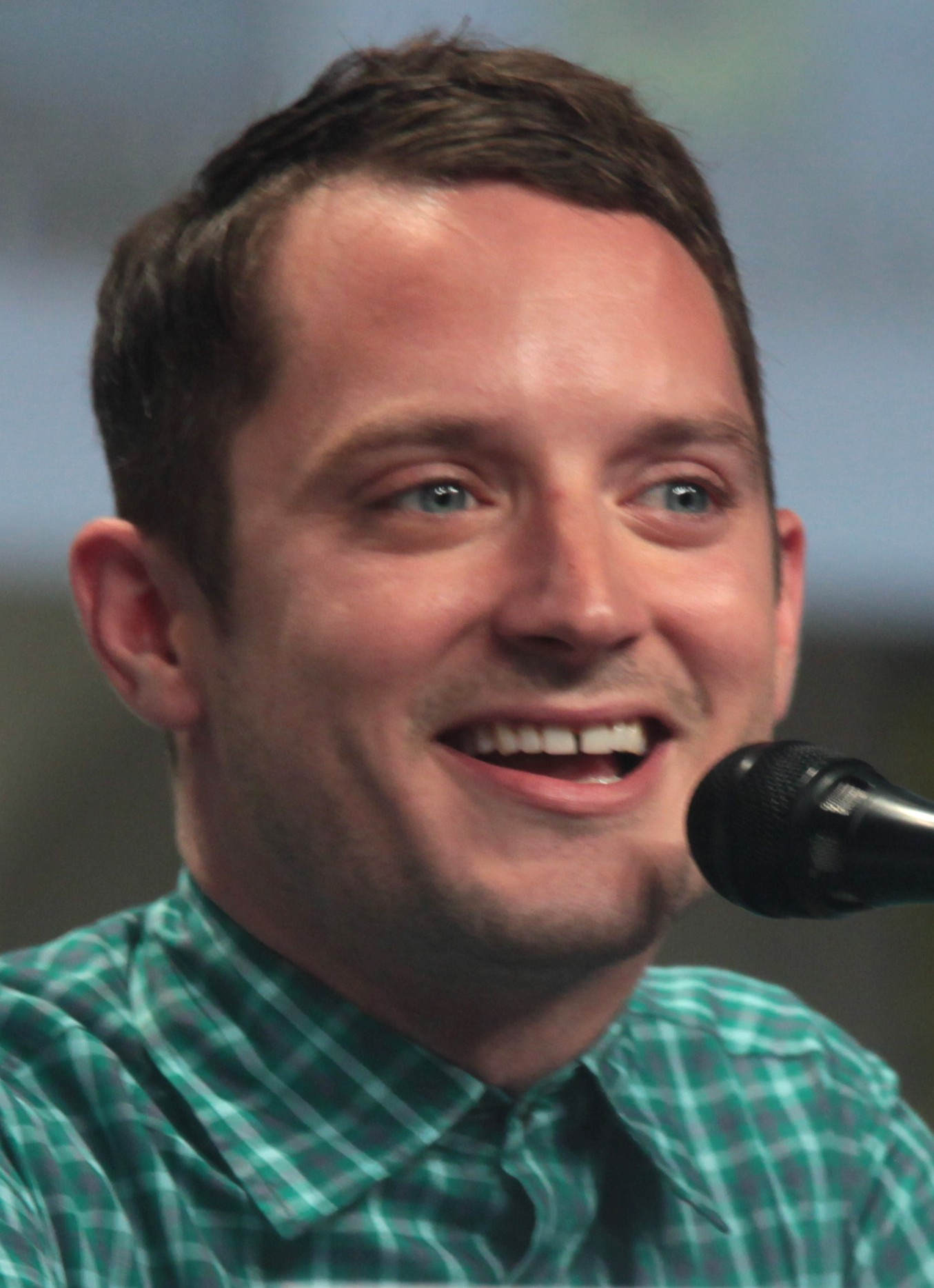 Elijah Wood Brother Za...