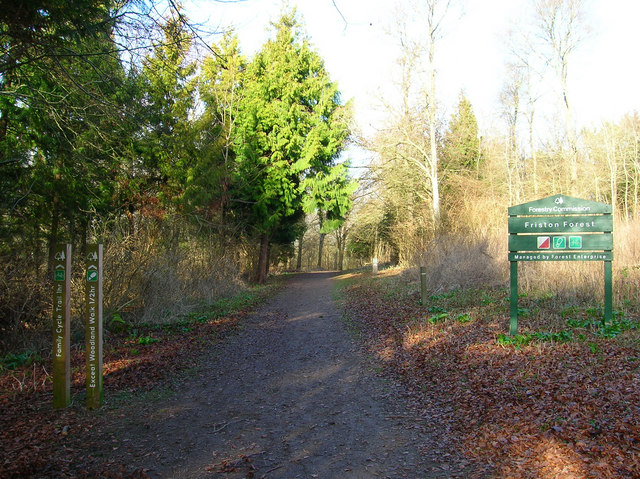 Entrance to Friston Forest - geograph.org.uk - 670388