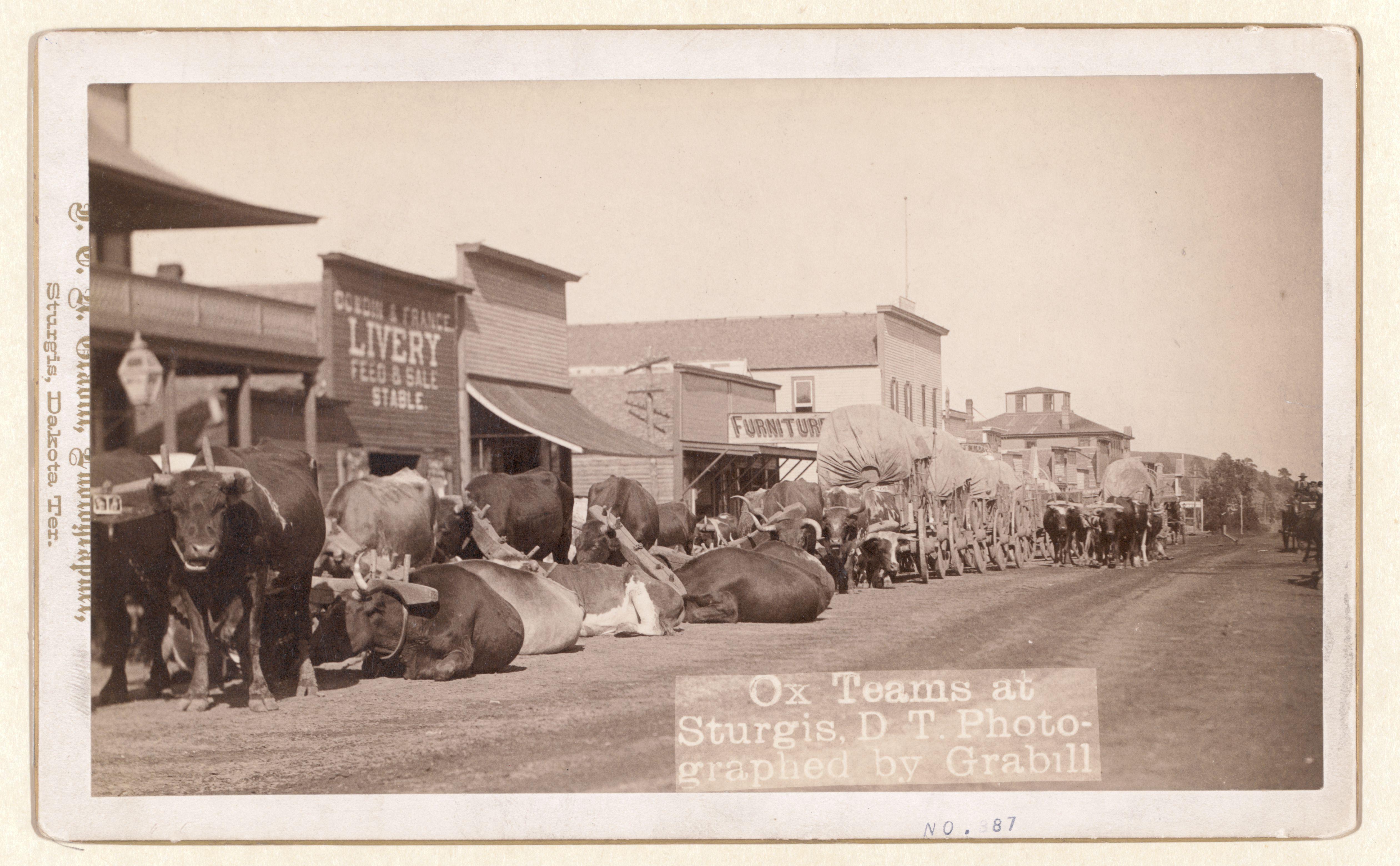 South dakota meade county howes - South Dakota Meade County Howes 5