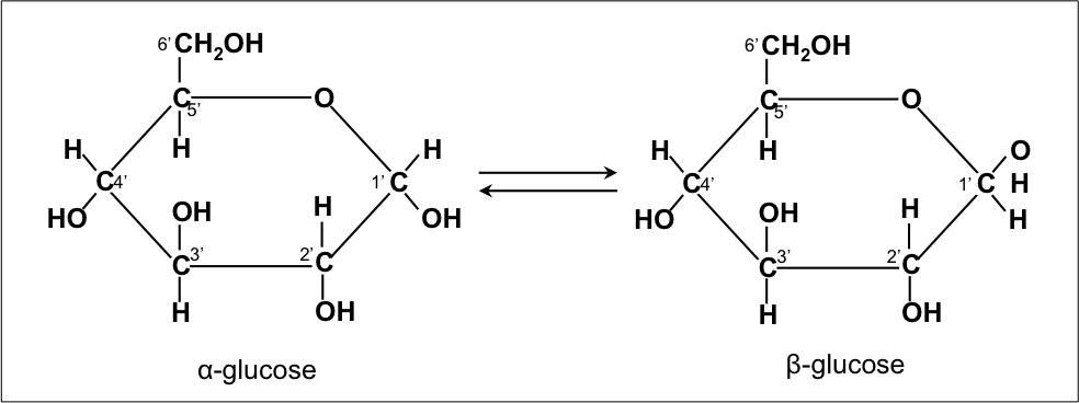 File Isomers Of Glucose Png Wikimedia Commons