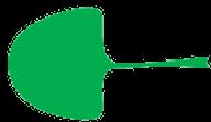 forme de la feuille flabellée