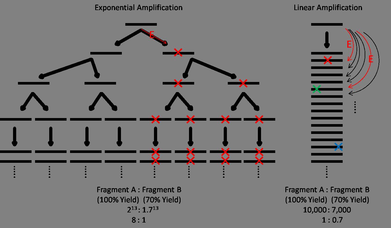 Lianti wikipedia ccuart Images