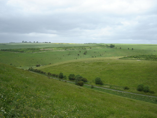 File:Looking into Pasture Dale - geograph.org.uk - 1390209.jpg