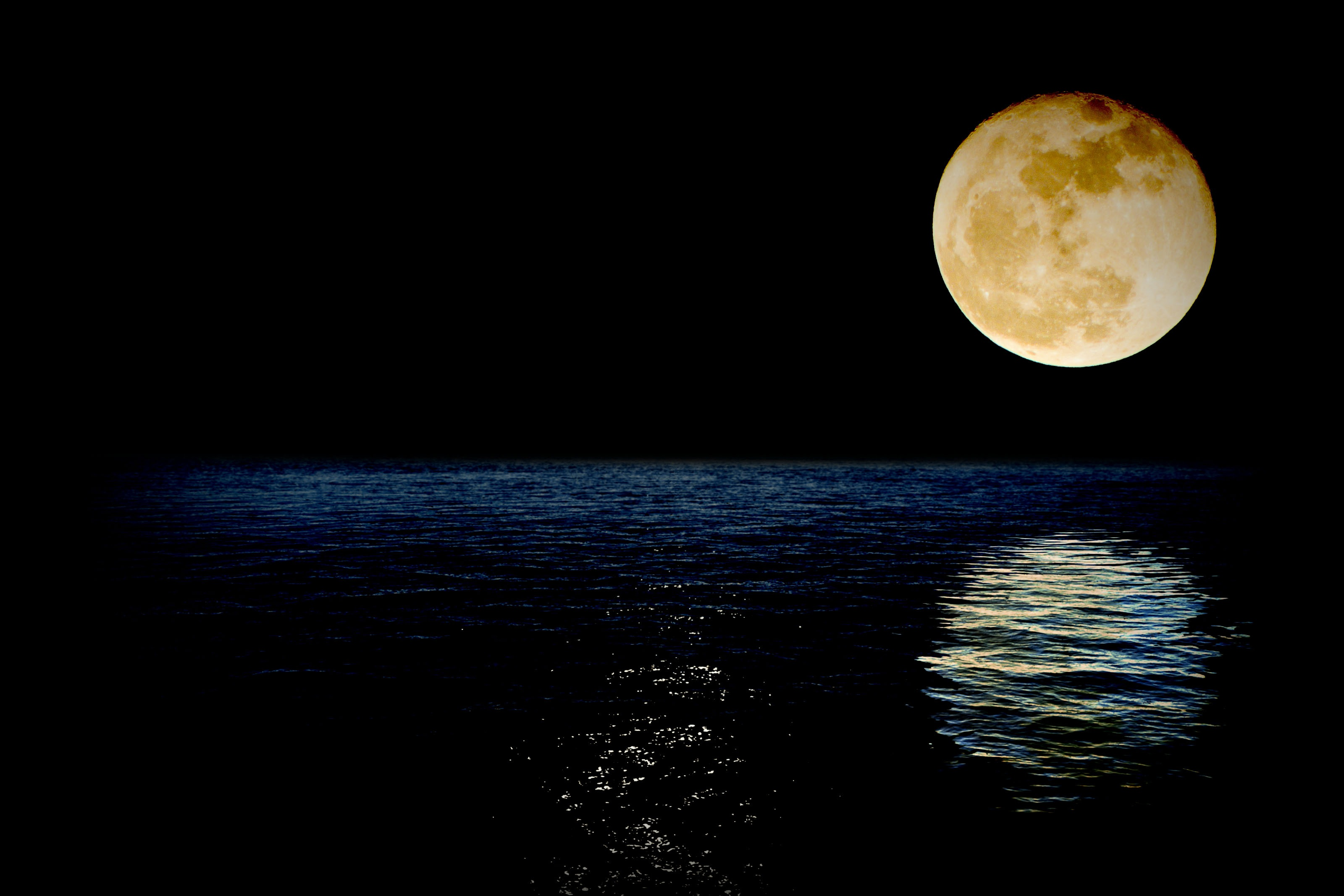 https://upload.wikimedia.org/wikipedia/commons/8/8e/Luna-Reflection-Sea-Superluna-Night-Super-Water-1826849.jpg