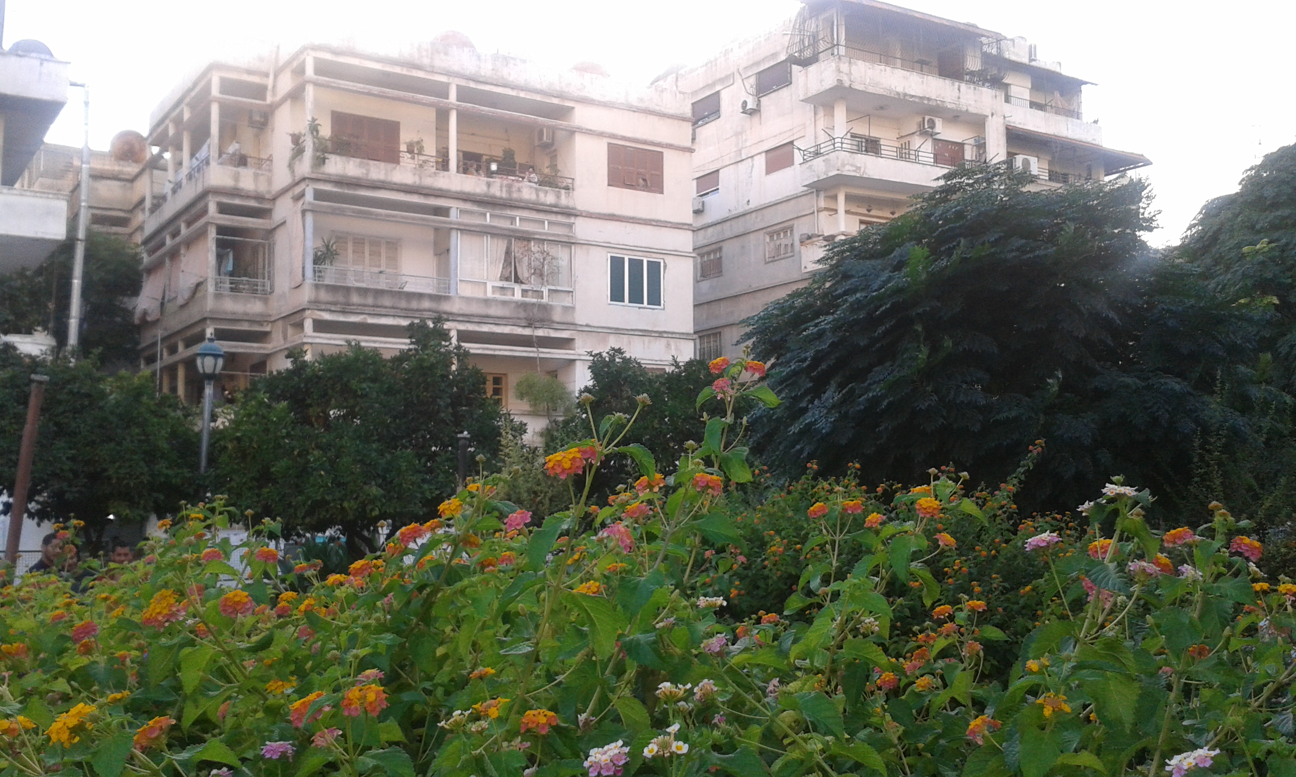File:Nature Gardens In Syria 13
