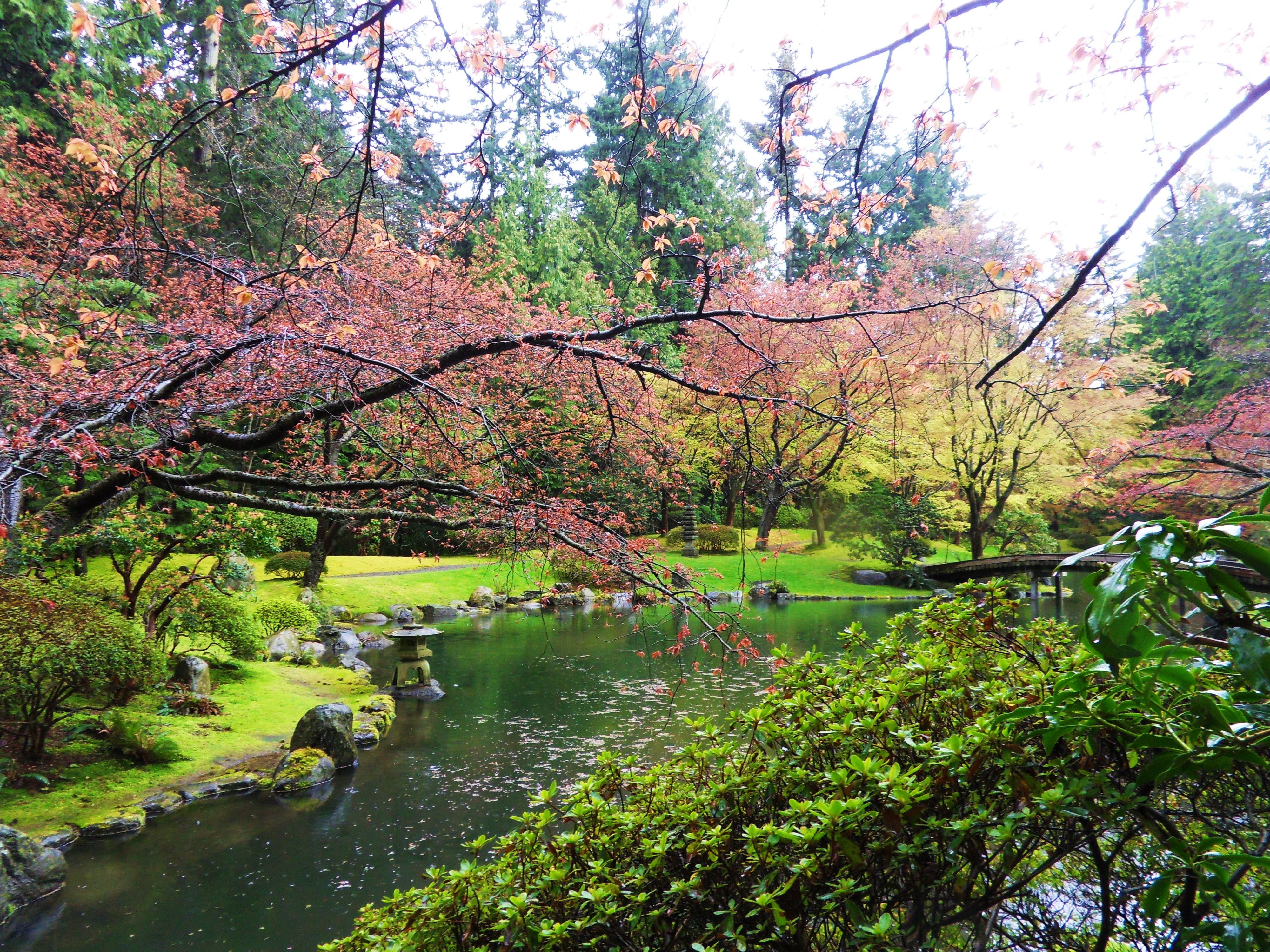 File:Nitobe Memorial Garden 991.jpg