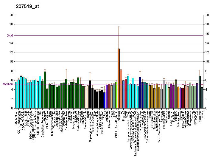 Транспортер серотонина анализ ролик для конвейера новосибирск