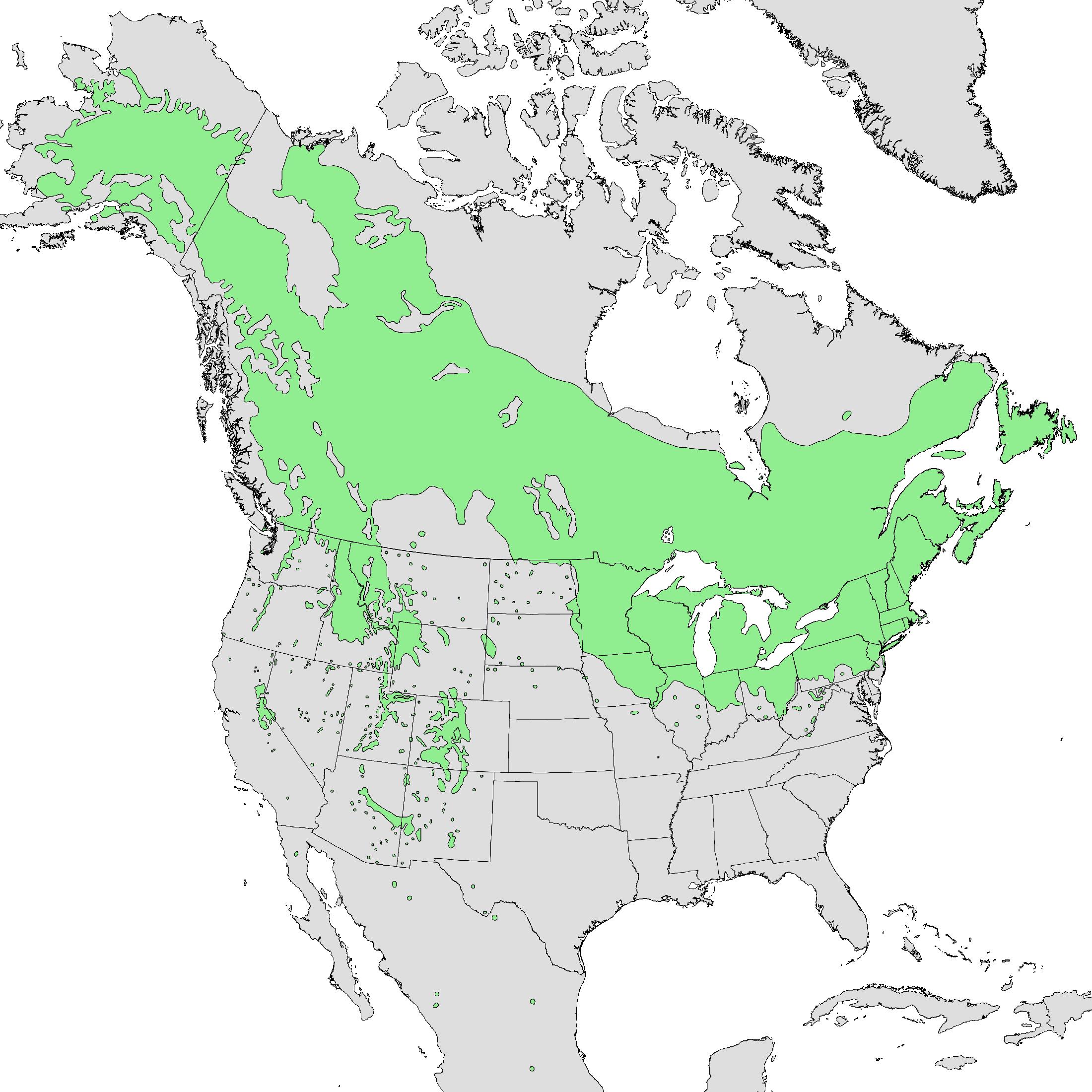 Populus tremuloides range map
