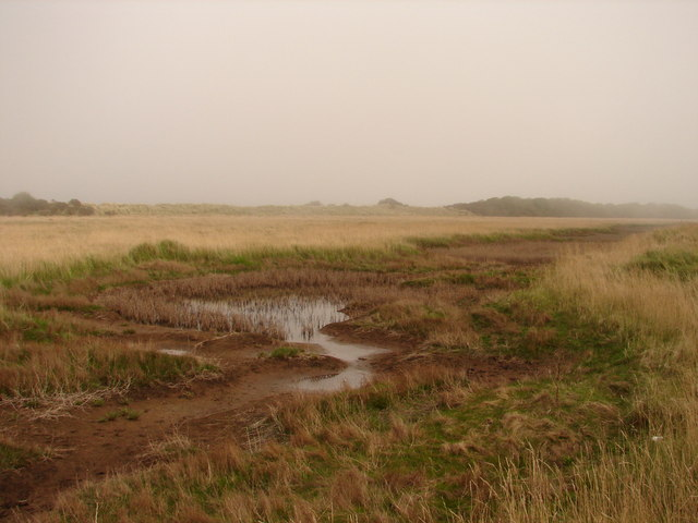 Water shortage - geograph.org.uk - 1255264