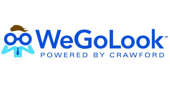 Image result for WeGoLook logo