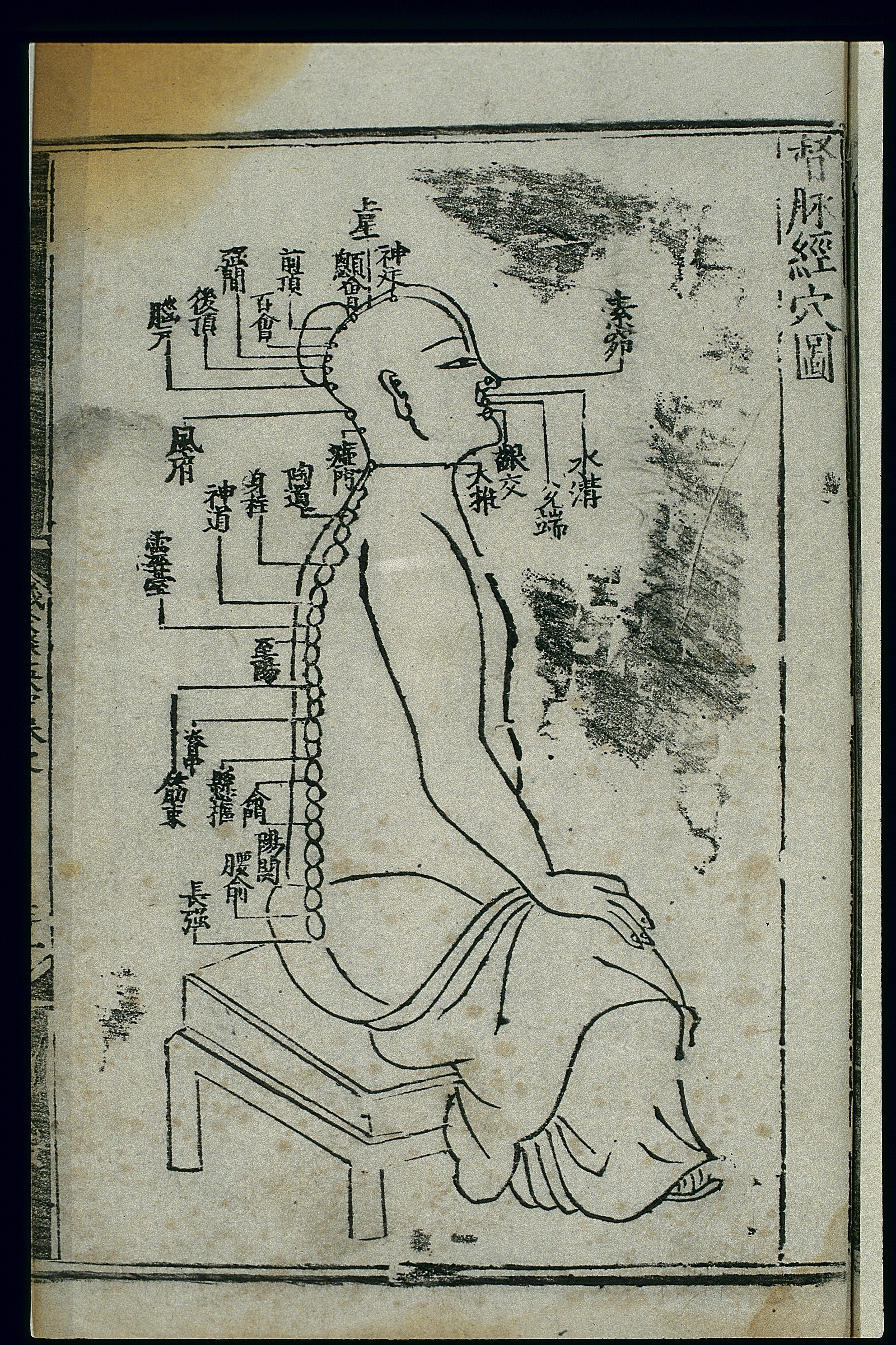 Chinese Horoscope Chart: Acupuncture chart dumai (Governor Vessel) Chinese Wellcome ,Chart