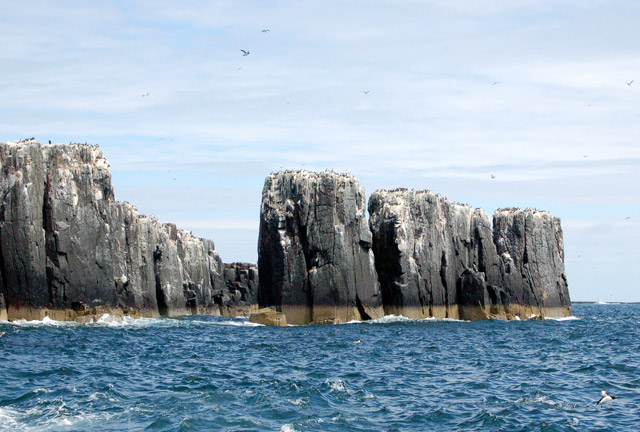 File:Approaching Staple Island's sea stacks - geograph.org.uk - 1378066.