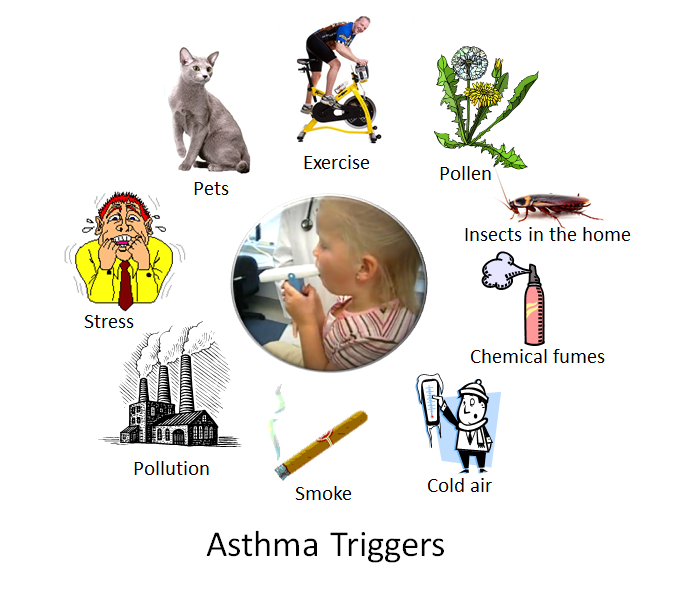 allergic rhinitis guidelines 2015 pdf