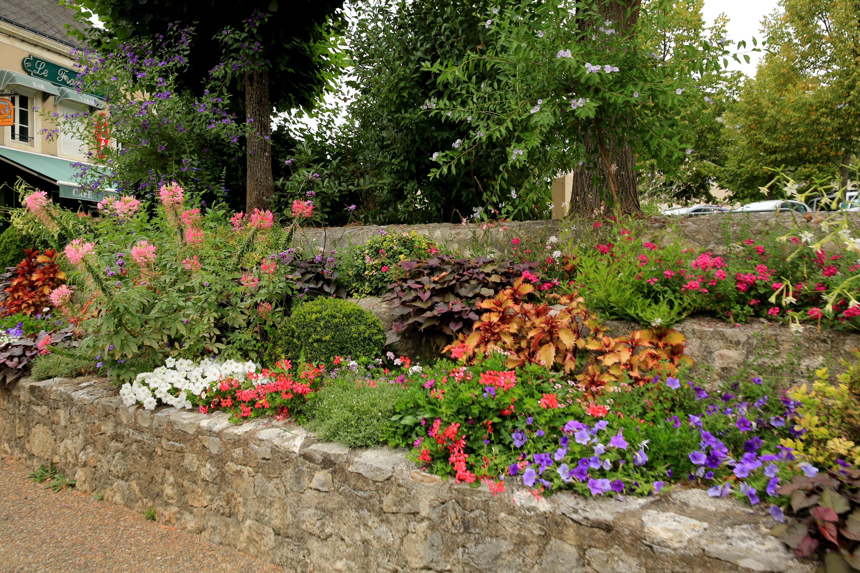 File:Azay-le-Rideau, massif de fleurs en ville.JPG - Wikimedia Commons