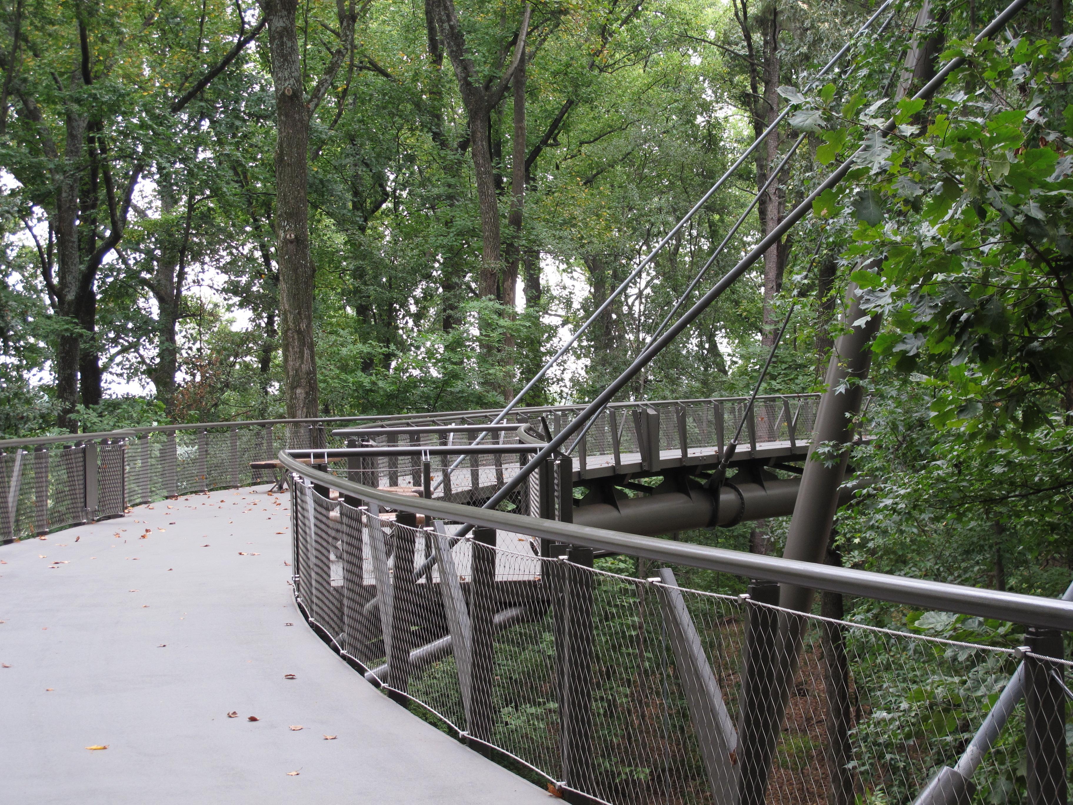 FileCanopy walk Atlanta.jpg & File:Canopy walk Atlanta.jpg - Wikimedia Commons