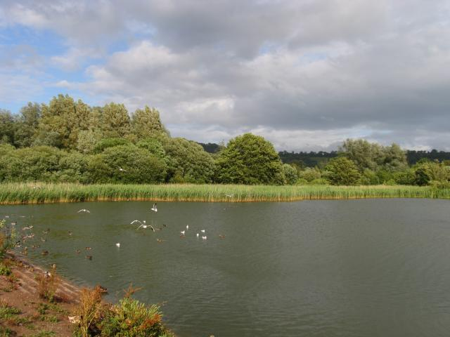 Chew Valley Lake, World Heritage Site - geograph.org.uk - 758