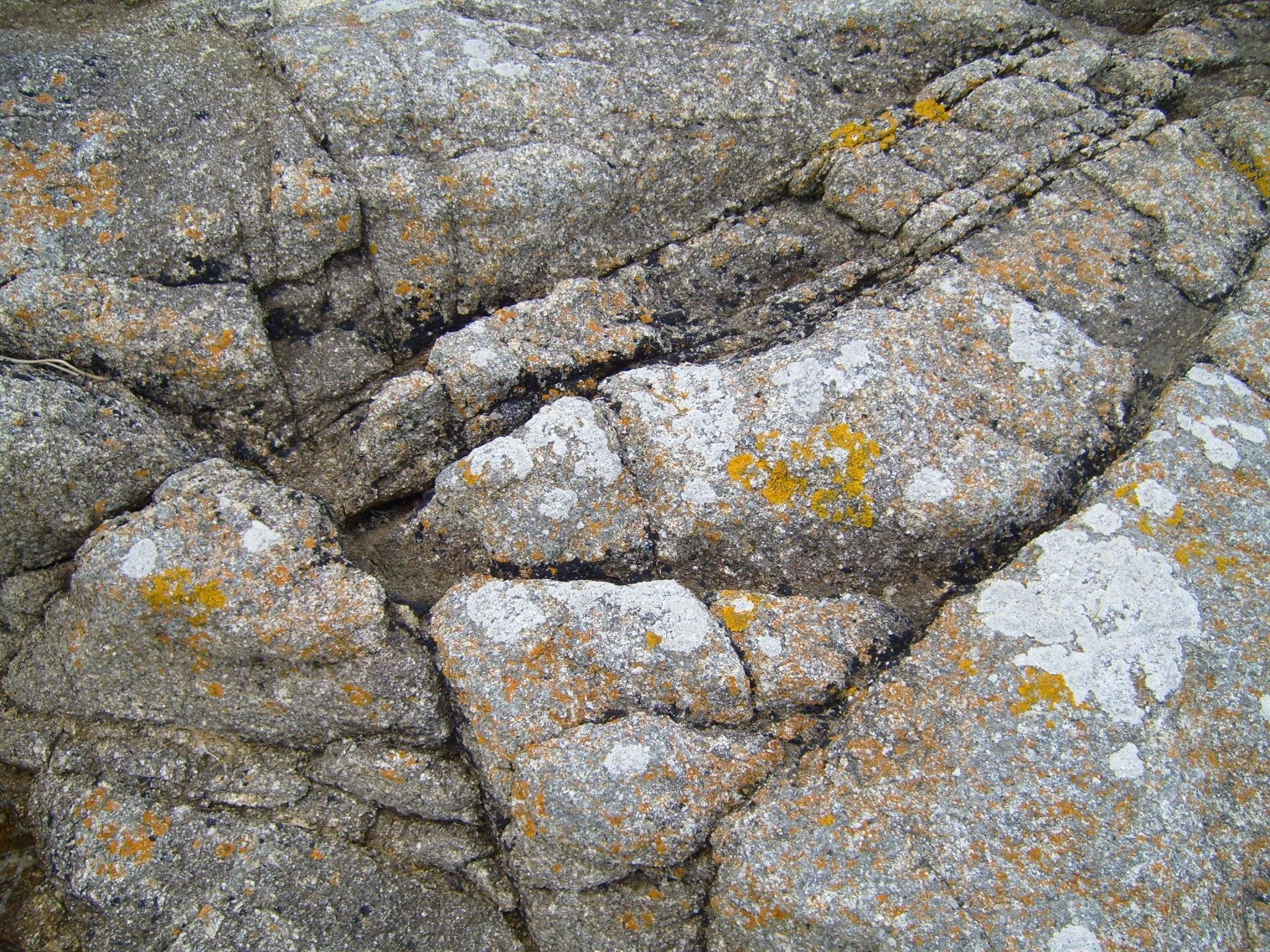 File:Cracked stones pattern.jpg - Wikimedia Commons: https://commons.wikimedia.org/wiki/file:cracked_stones_pattern.jpg