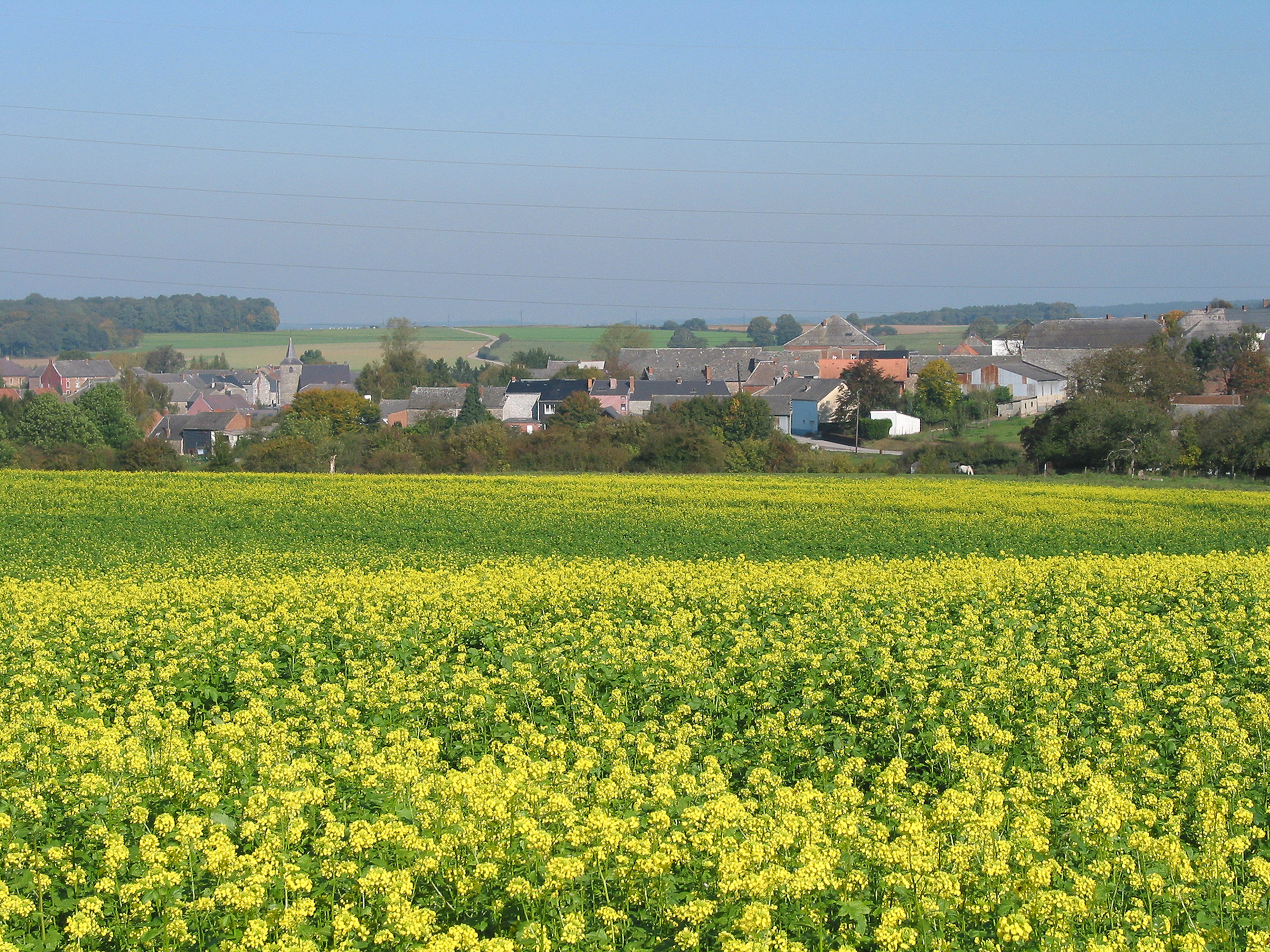 Scenery & Spring Pictures: Photos De Paysages Cycle 3