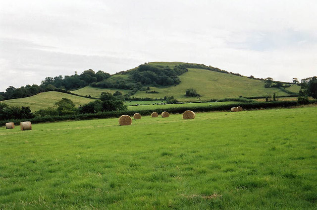East Brent, Brent Knoll from the north - geograph.org.uk - 44047