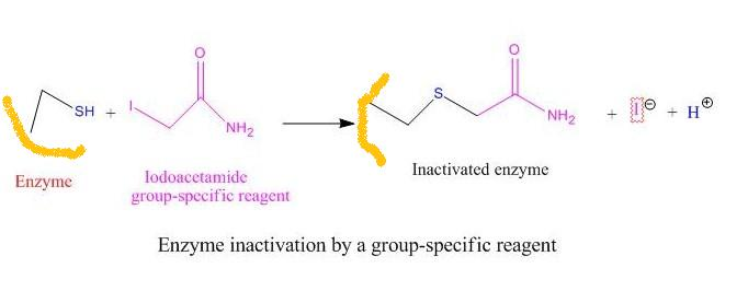 Group specific-reagent01.jpg