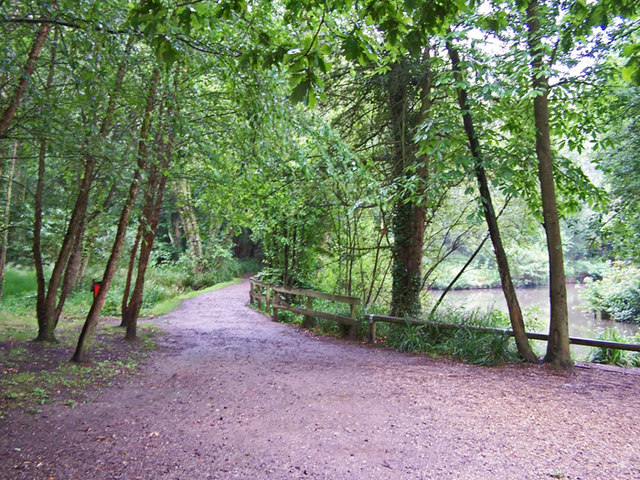 Holly Hill woodland park - geograph.org.uk - 1433428