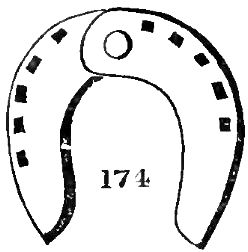 File:Horse shoes and horse shoeing-130.jpg