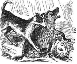 "Illustration from Fraser's magazine showing an artist's impression of a ""stag-hound"" biting a spotted hyena attacking its master Hyena attack (1842 woodcut).jpg"