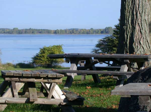 File:Picnic tables along the Saint Lawrence River in Robert Moses State Park - Thousand Islands in northern New York.jpg