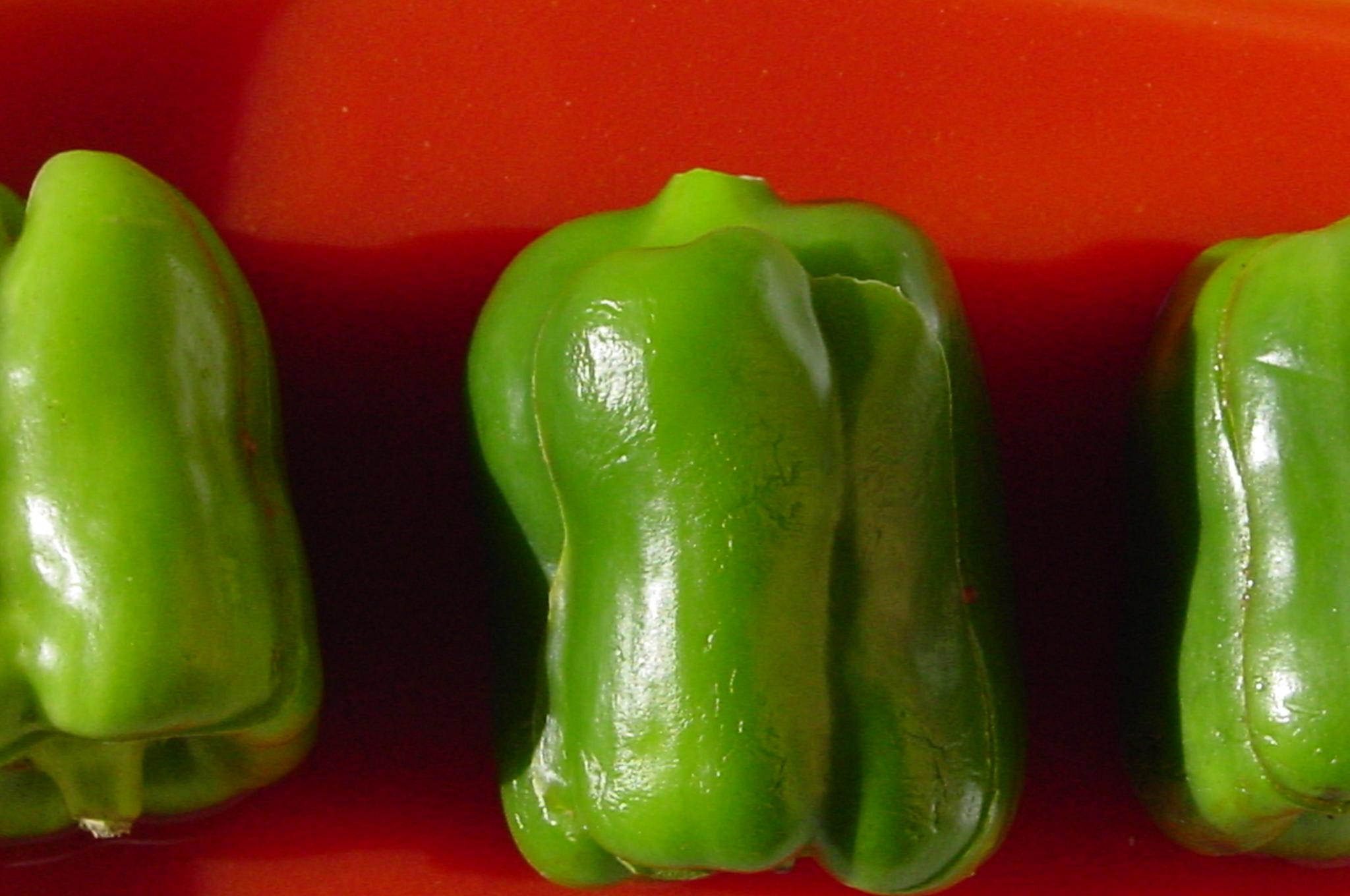 """Résultat de recherche d'images pour """"poivron vert wikipedia"""""""
