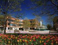 Princeton forrestal village square.jpg