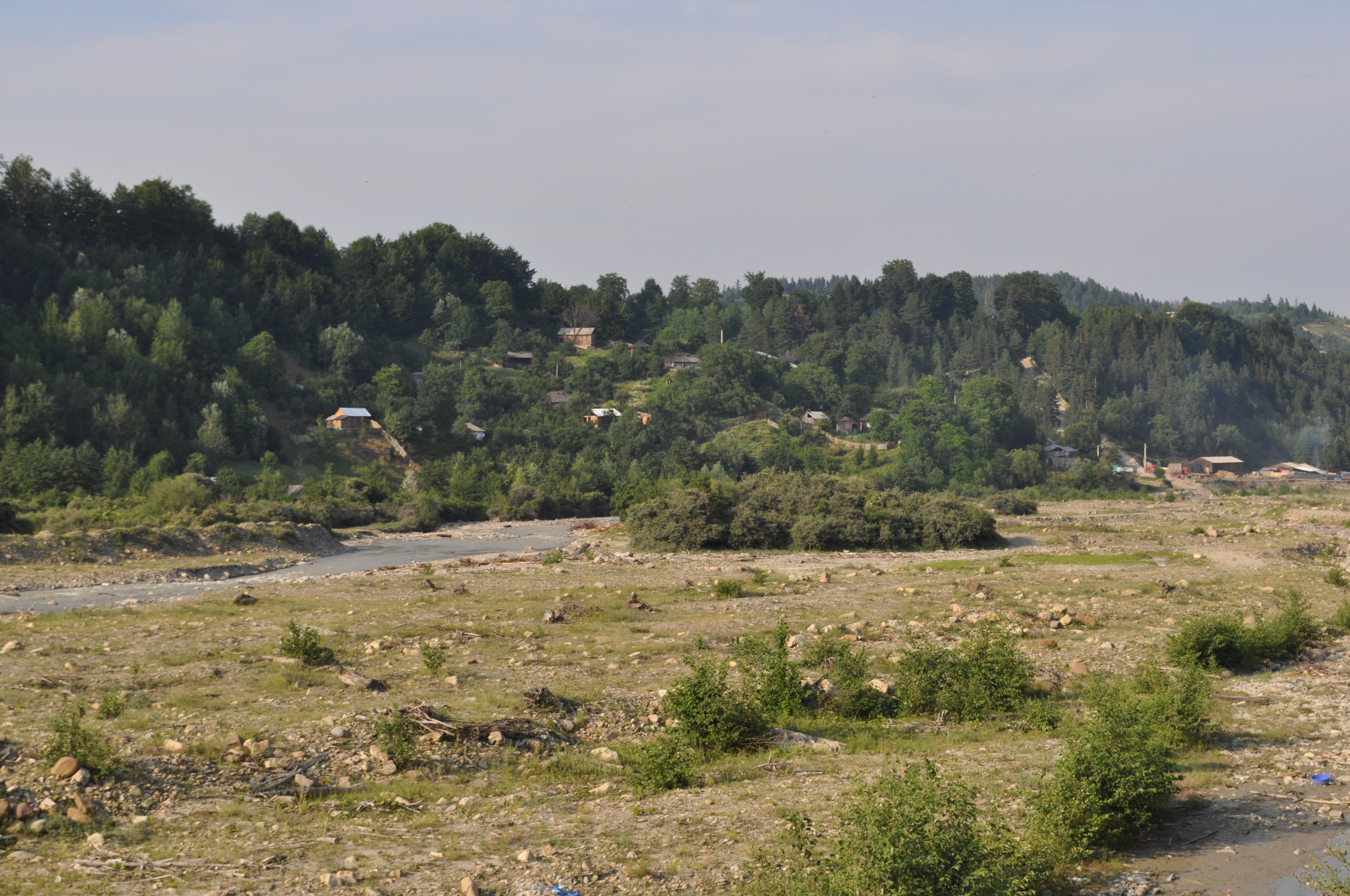 Nereju Vrancea Wikipedia