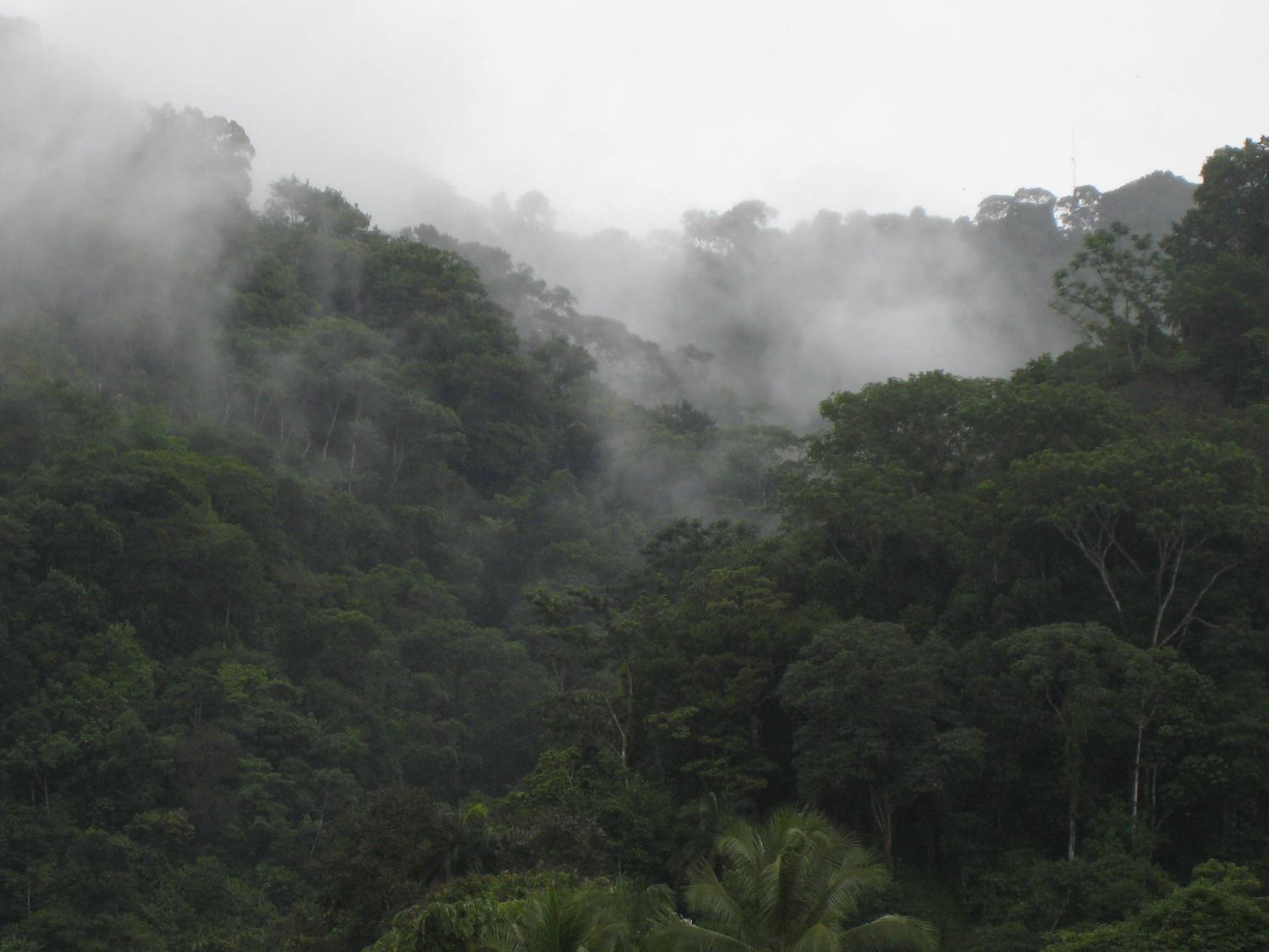Https Costa Rica Guide Com Travel Best Time May