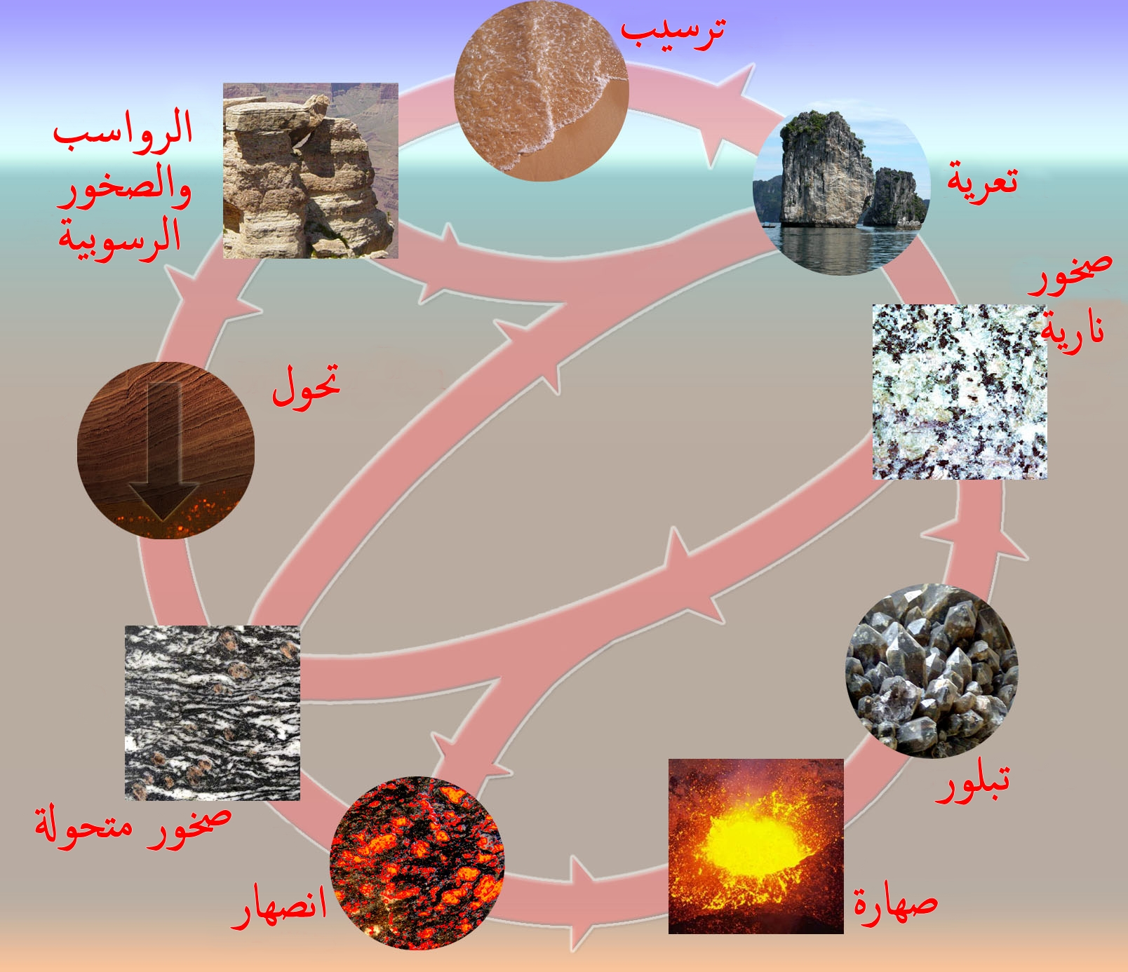 دورة صخرية Wikiwand