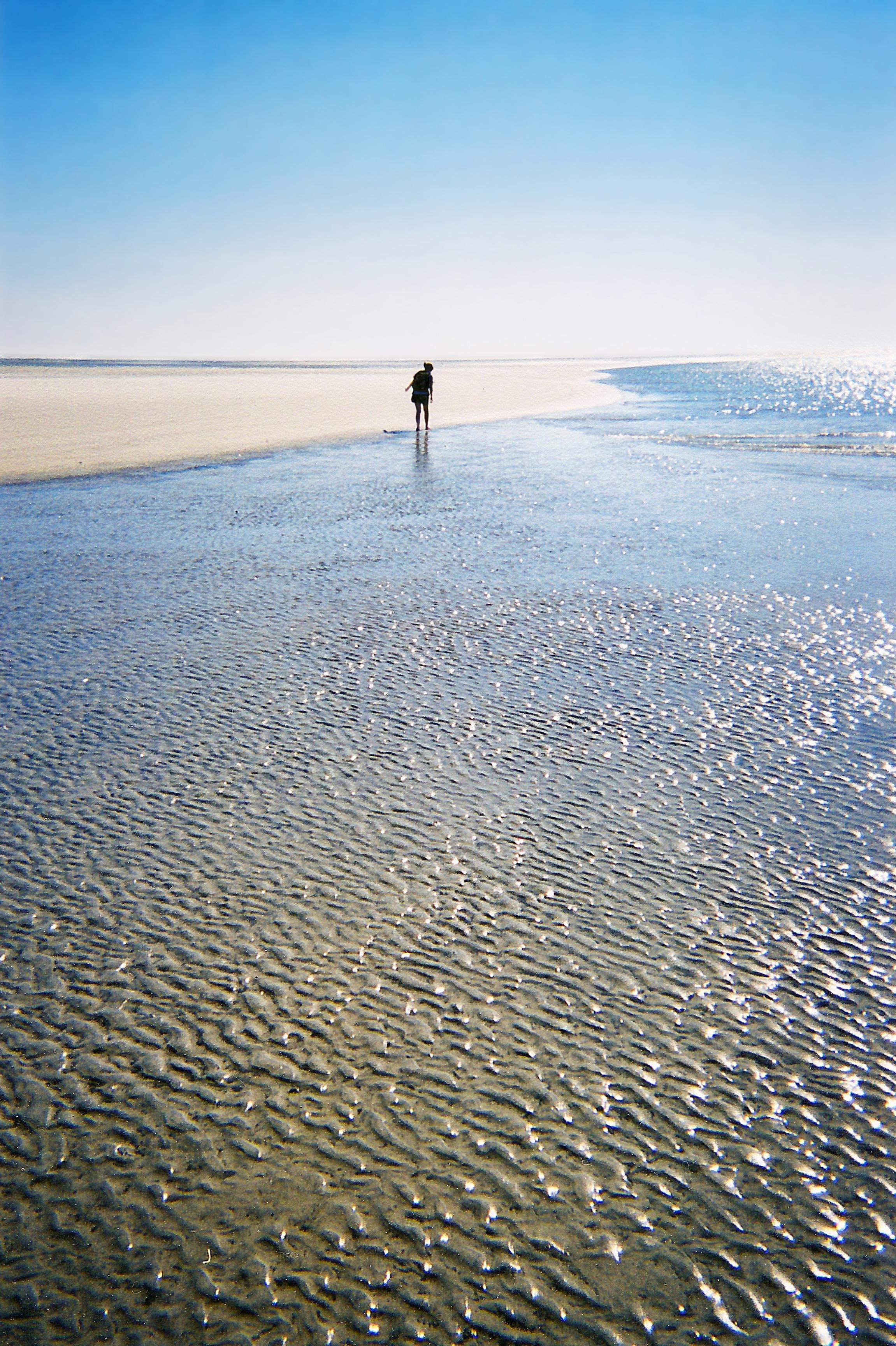 Sapelo Island beach