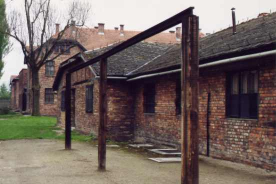 "research paper on survival in auschwitz Survival in auschwitz essays""imagine now a man who is deprived of everyone he loves, and at the same time of his house, his habits, his clothes, in short, of everything he possesses: he will be a hollow man, reduced to suffering and needs, forgetful of dignity and restraint, for he who loses a."