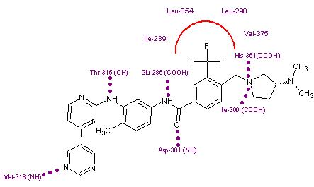 erlotinib structure activity relationship of imatinib