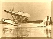 CANT Z.501 afloat.jpg