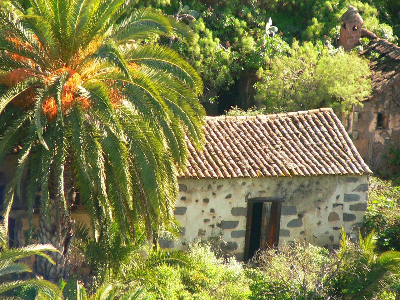 File casa canaria medianias santa brigida gran - Cosas para el jardin ...