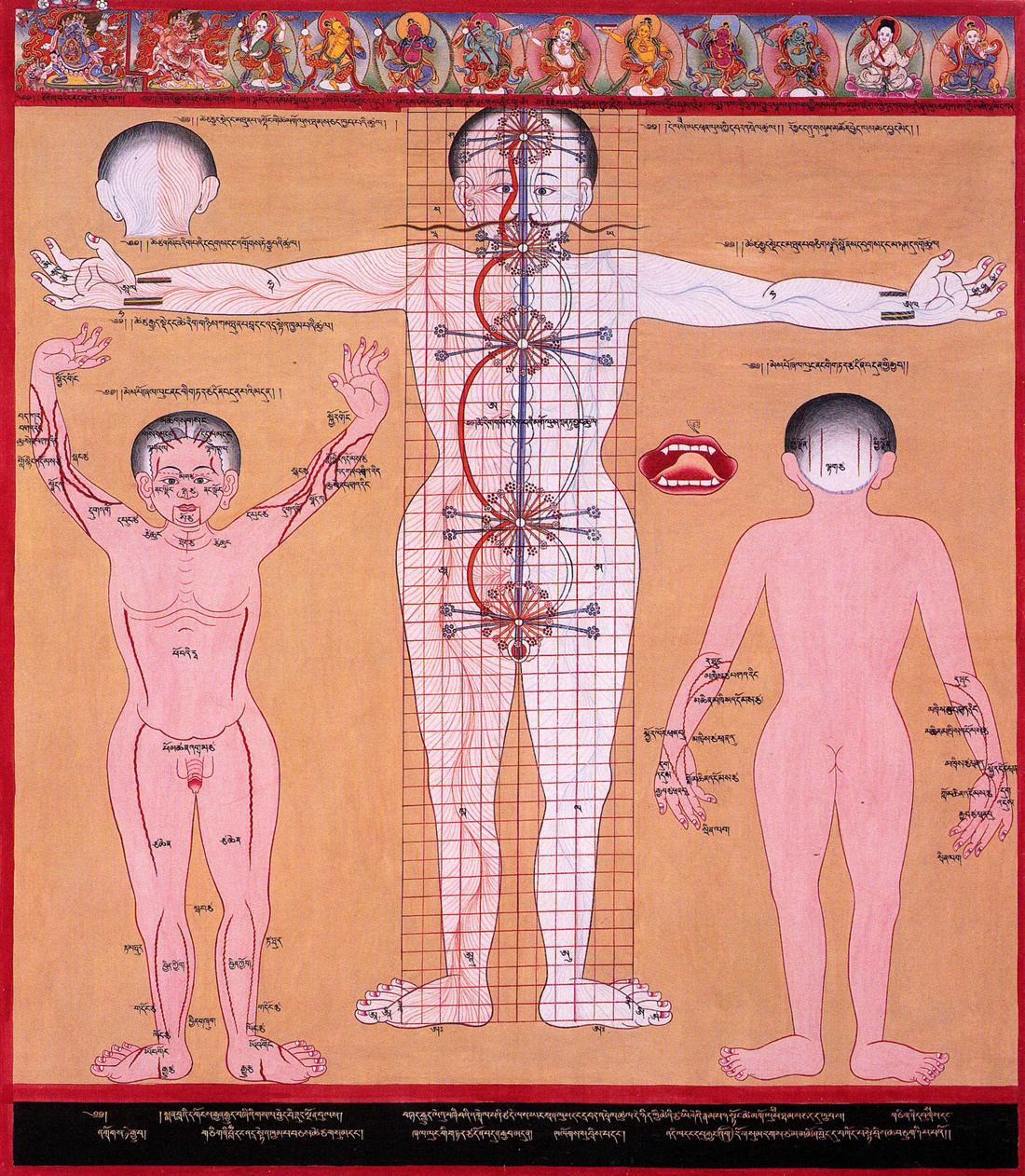 A Tibetan illustration of the [[subtle body