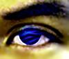 Eyed.jpg