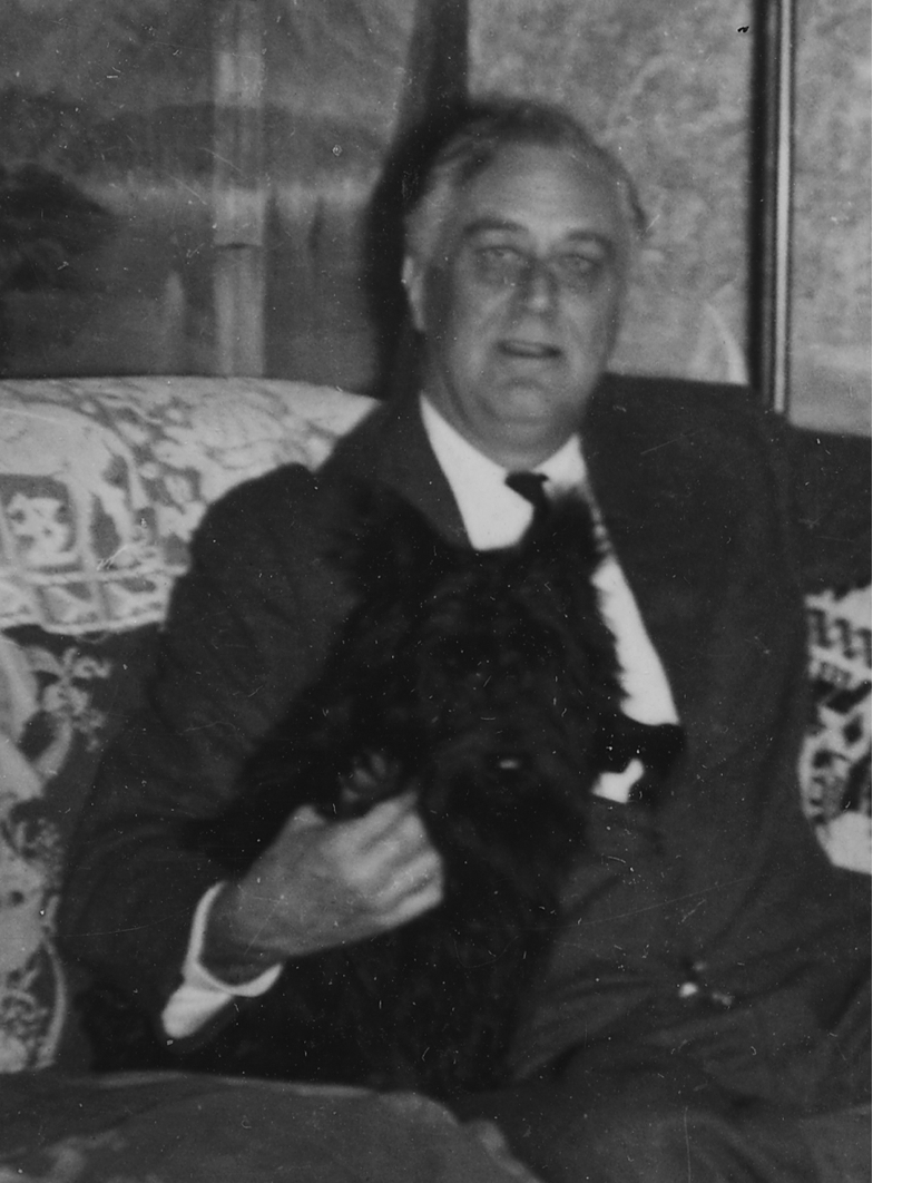 http://upload.wikimedia.org/wikipedia/commons/9/90/FDR_seated_with_Fala.jpg