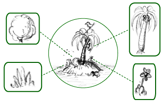 Simplified schematic of an island's flora – all its plant species, highlighted in boxes