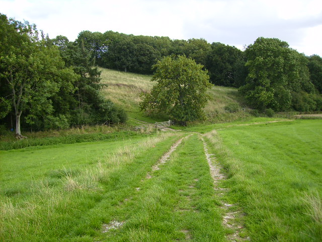 Footpath going towards gate at corner of Skipster Hagg Wood - geograph.org.uk - 226858