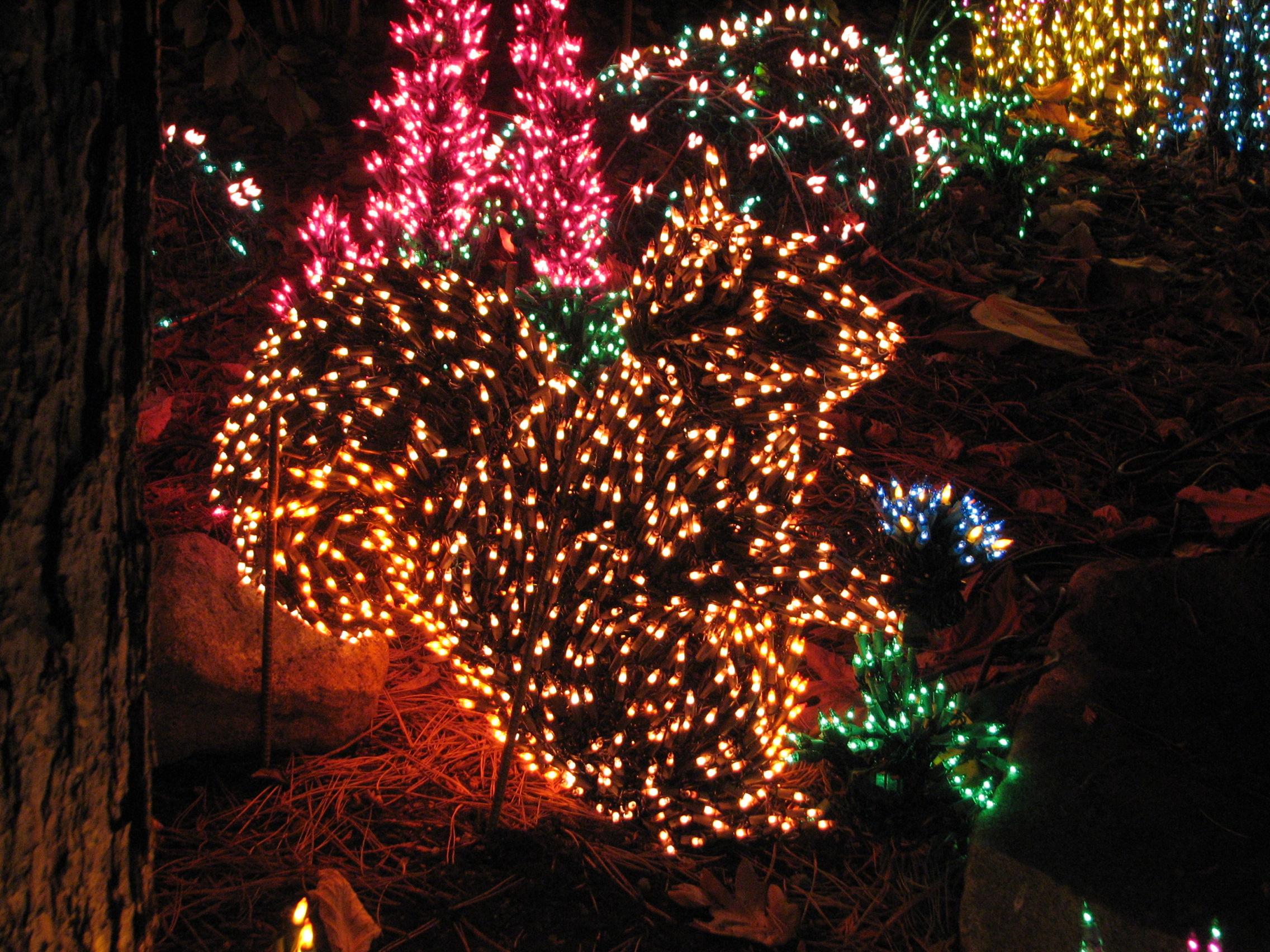 File:Garden d\'Lights 2008 at the Bellevue Botanical Garden, img044 ...