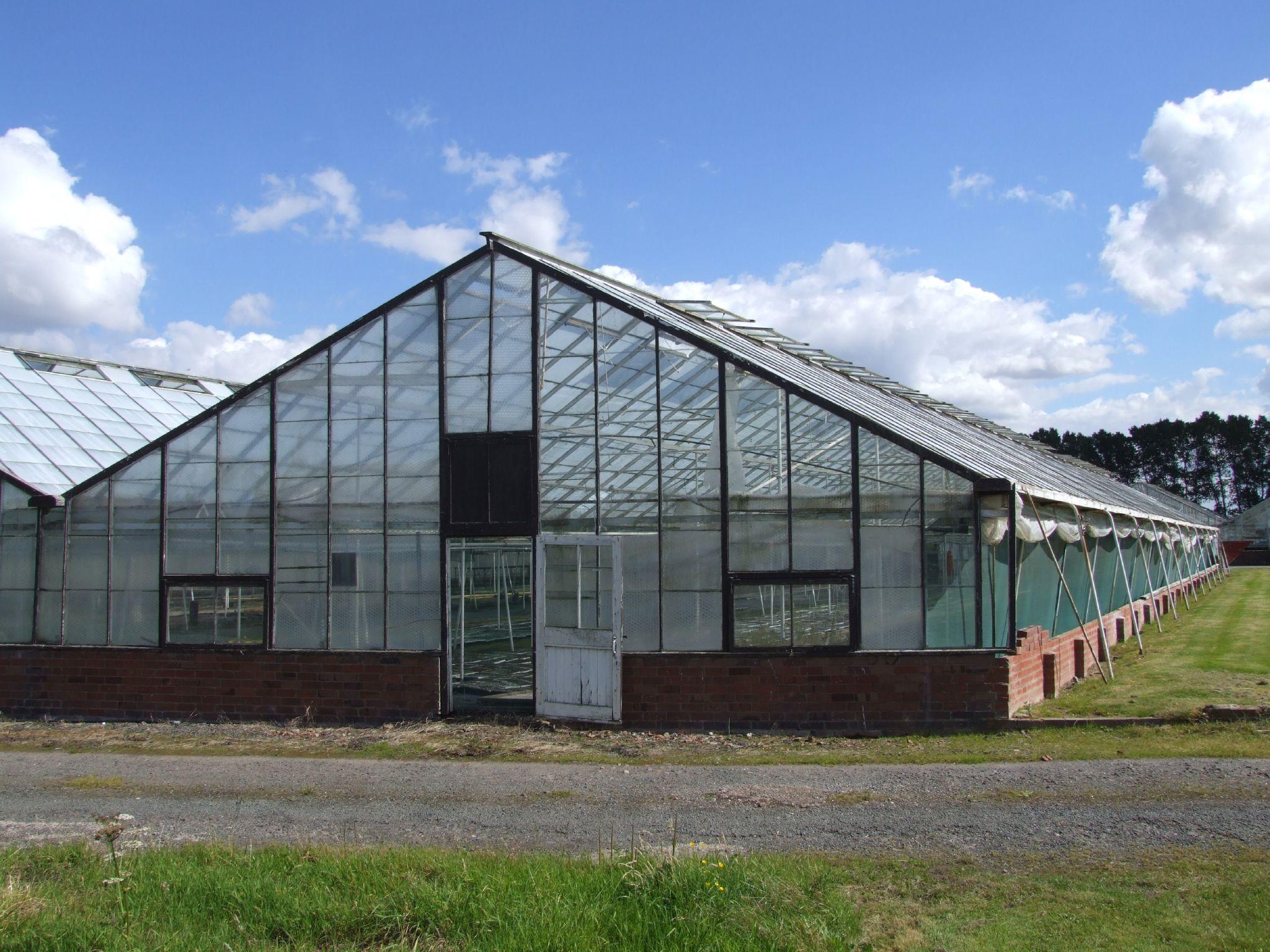File:Glasshouse crops 1.jpg - Wikimedia ommons - ^