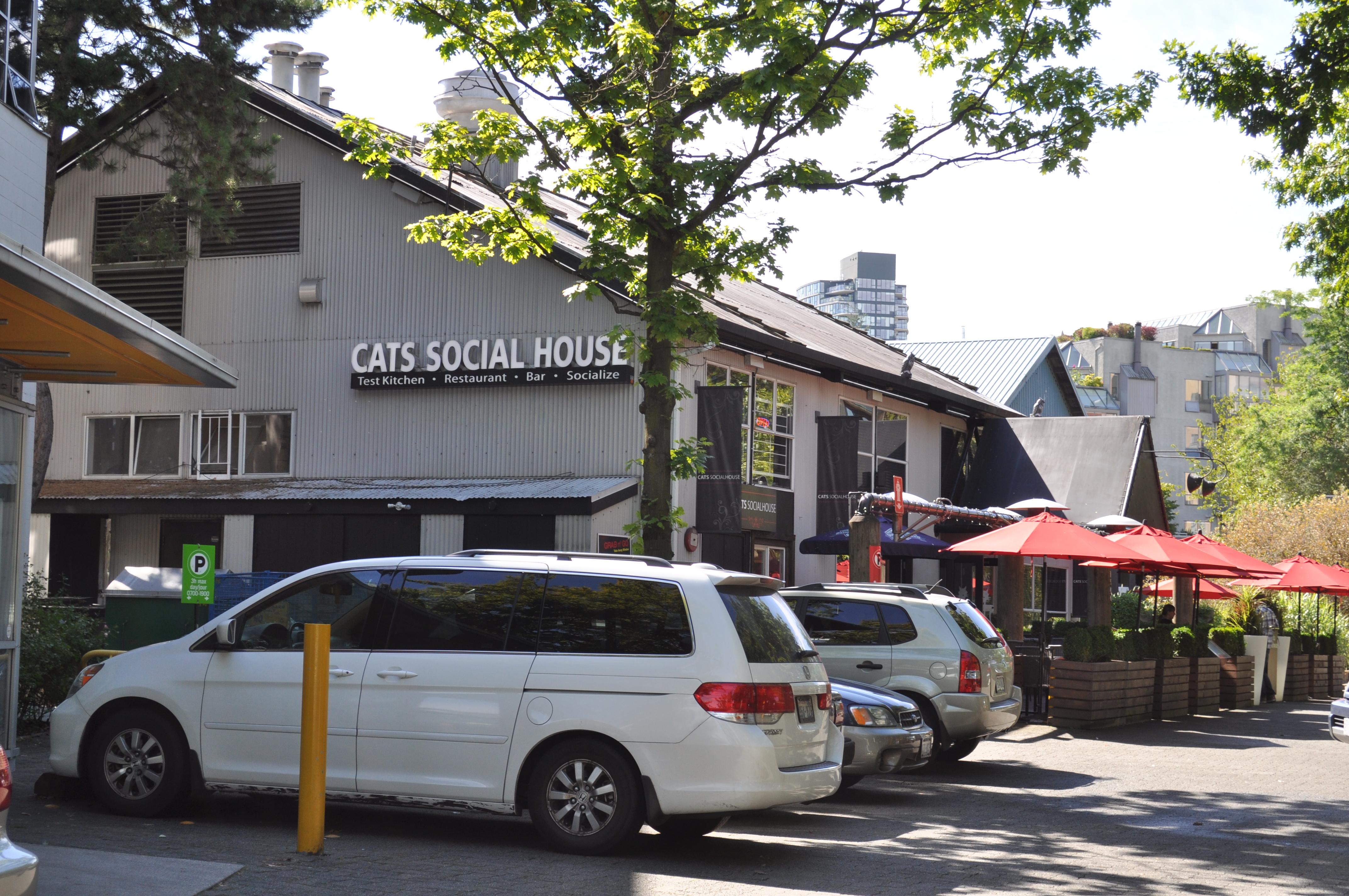 Granville Island Cats Social House