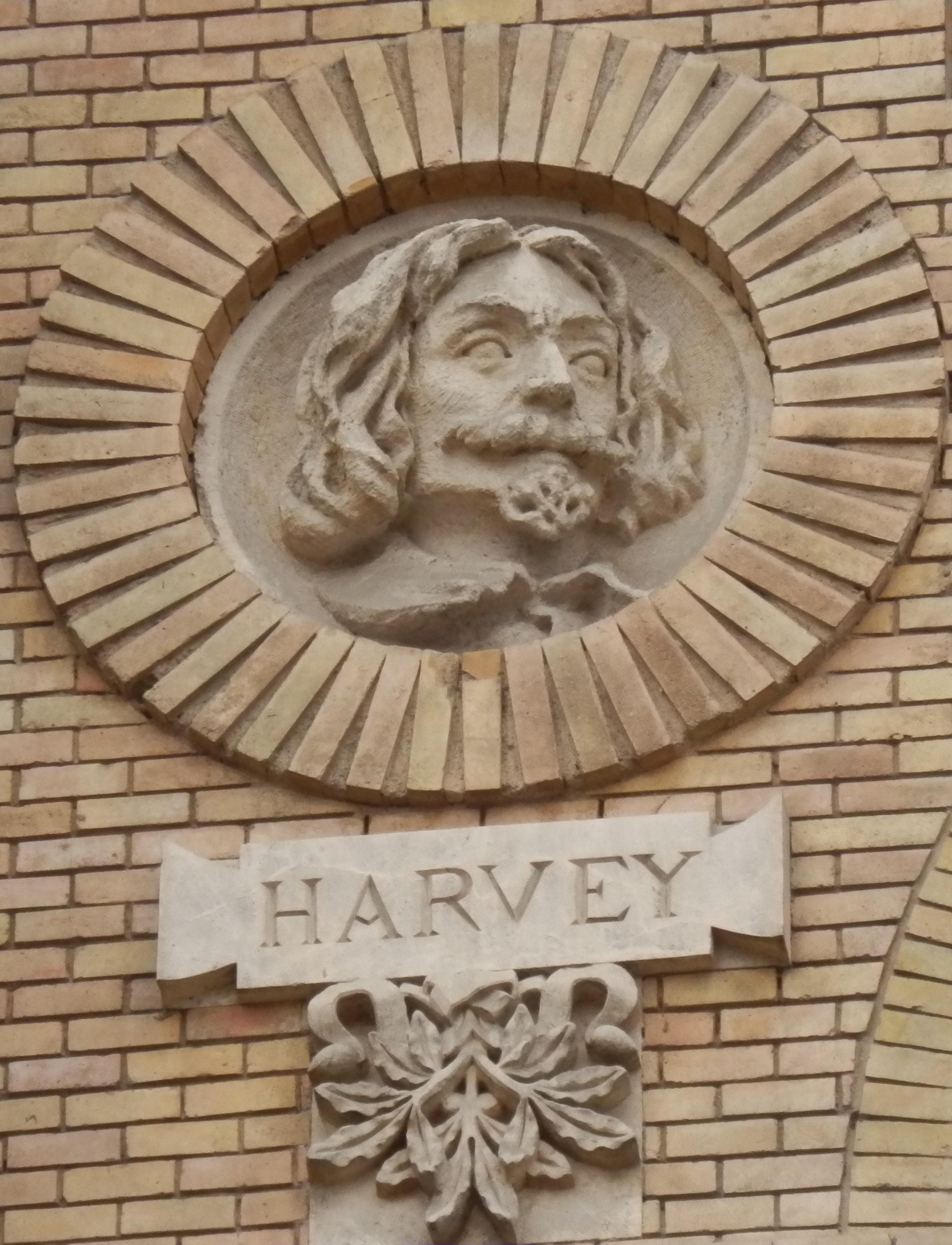 Depiction of William Harvey